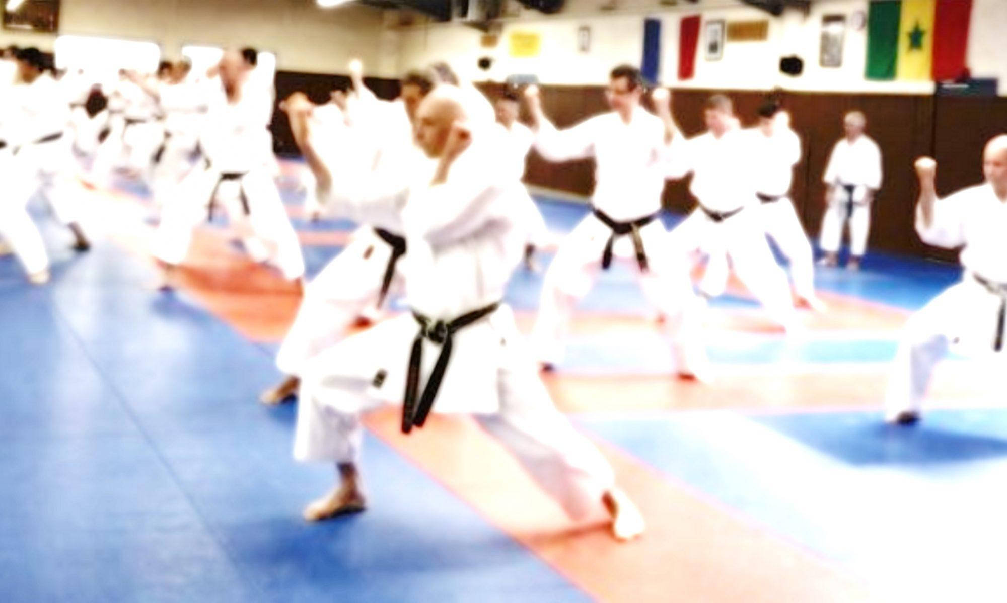 SKN - Ecole de karate